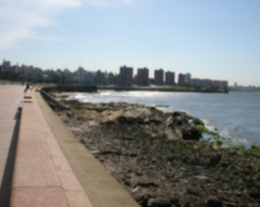 Learn Spanish in Montevideo
